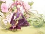 Konachan.com - 82551 flowers hatsune_miku long_hair thighhighs tie twintails vocaloid yuse