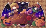 Konachan.com - 87570 animal cat dress flowers halloween kaenbyou_rin kirisame_marisa kisume kurodani_yamame pumpkin s_nyaau touhou