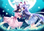 Konachan.com - 99491 2girls animal_ears black_hair bunny_ears bunnygirl capura_lin inaba_tewi long_hair moon night red_eyes reisen_udongein_inaba short_hair tail touhou