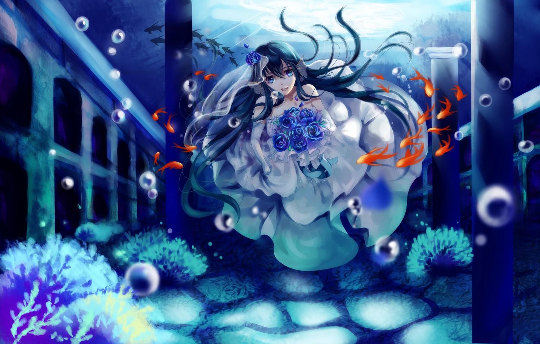 Konachan.com – 157812 animal black_hair blue_eyes bubbles