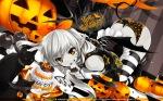 Konachan.com - 87054 animal animal_ears ass bow cat girls_avenue halloween hat long_hair misaki_kurehito pointed_ears pumpkin tail
