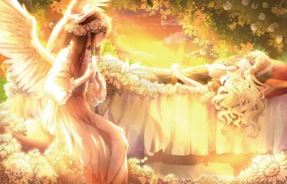 Konachan.com - 186025 2girls blonde_hair bow braids brown_eyes brown_hair clouds dress flowers headdress leaves long_hair orange sky sleeping sunset touhou tree wings