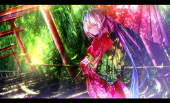 Konachan.com - 171475 feathers forest fujiwara_no_mokou gray_hair japanese_clothes kimono long_hair ponytail red_eyes ryosios stairs torii touhou tree umbrella