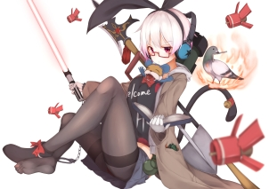 Konachan.com - 214758 aliasing animal bell bird book glasses gloves headphones original pantyhose red_eyes shackles star_wars sword tail touhou waterdog weapon