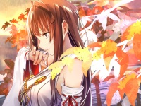 konachan-com-229607-autumn-bonnie23-brown_hair-close-japanese_clothes-kantai_collection-kongou_kancolle-long_hair-purple_eyes